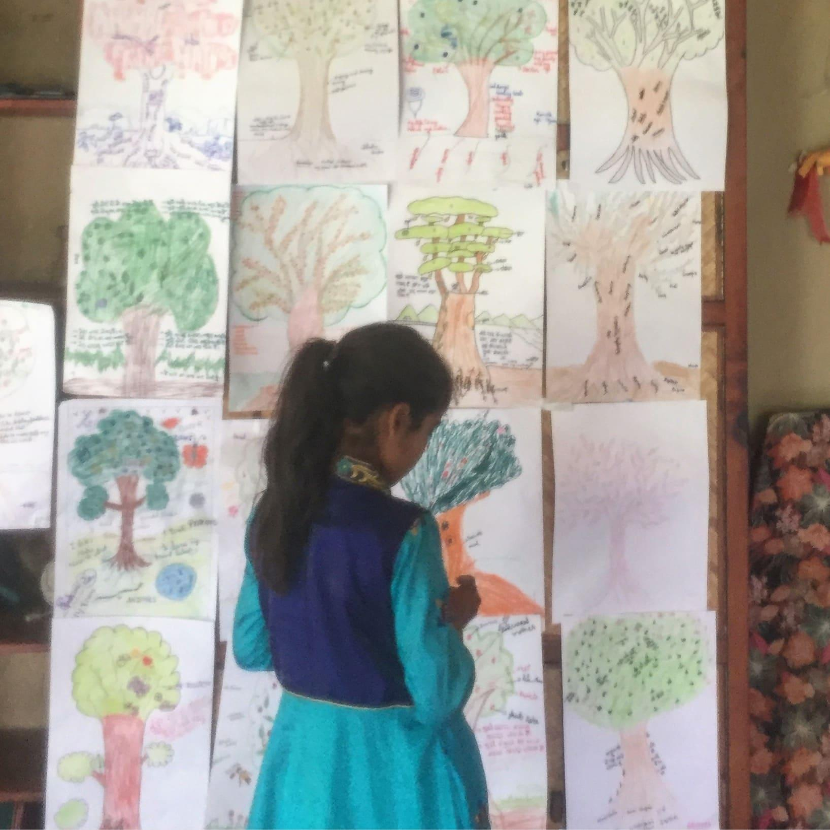 The Tree that Jaya Grew: Using Tree of Life in the Rural Indian Himalayas